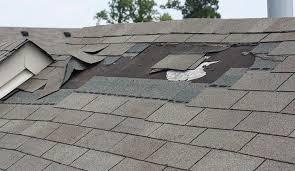 New Look Home Improvements investigating a roof repair.